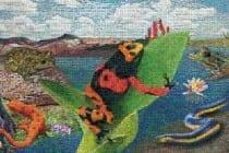 Amphibians:  Life on a Limb